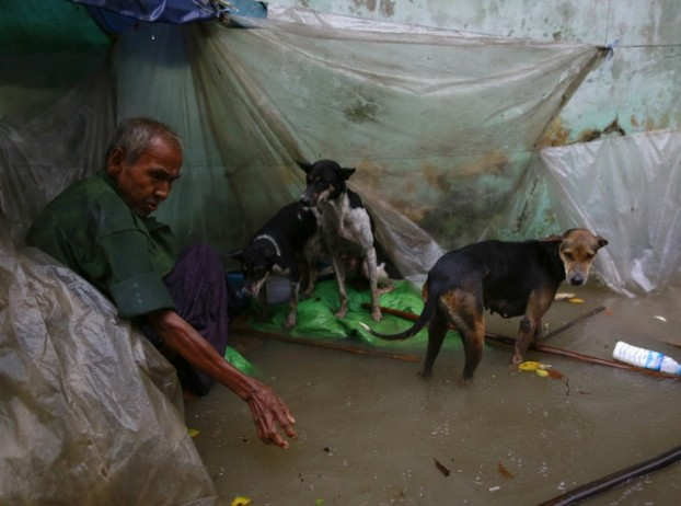 A man looks on next to his dogs along a flooded street during  heavy rainfall in central Yangon